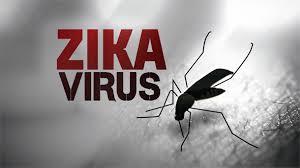 Informationen zum Zika Virus