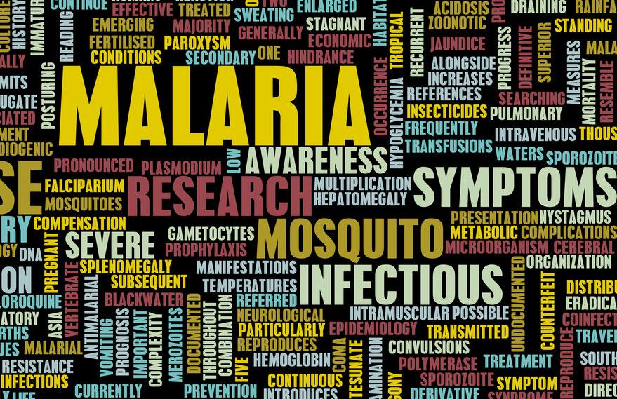 die-tropenkrankheit-malaria-in-kambodscha